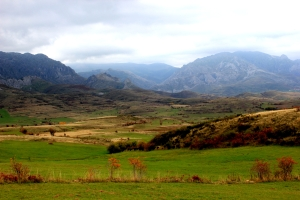 Camino de San Salvador - La Robla - Poladura de la Tercia (122) - copia