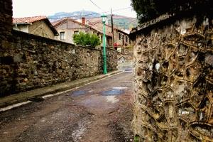 Buiza, Camino de San Salvador - La Robla - Poladura de la Tercia (71)