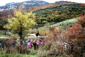 Camino de los Arrieros, Camino de San Salvador - La Robla - Poladura de la Tercia (74)