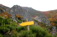Camino de San Salvador - La Robla - Poladura de la Tercia (91)