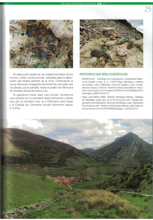 Quinta página de nuestro Artículo en la Revista Arbolio